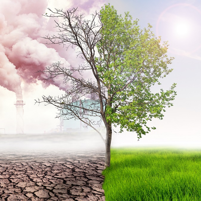Climate Change and Resiliency